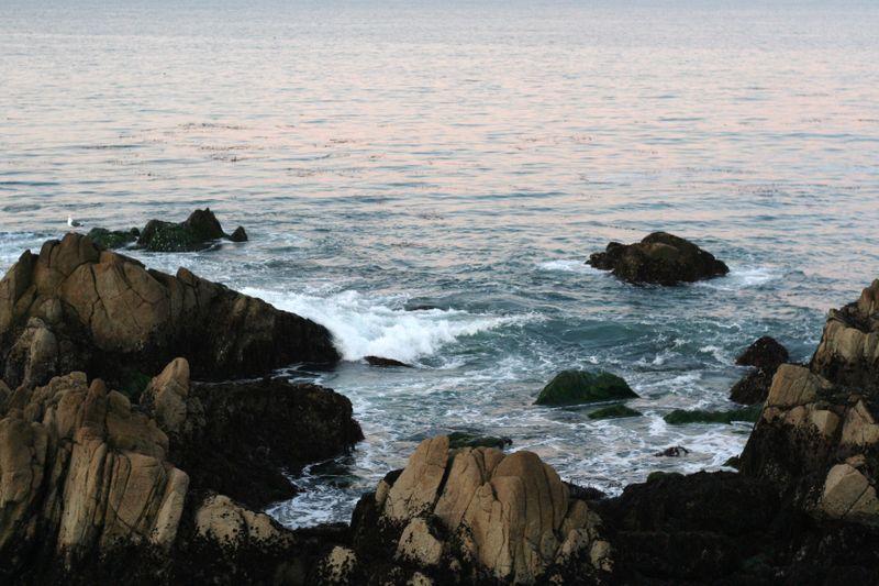 Monterey12.08 021