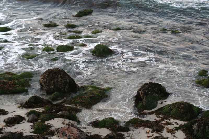 Monterey12.08 022