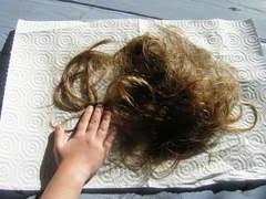 Haircut_008