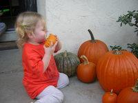 Pumpkins05_013