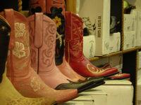 Texasjan06_012