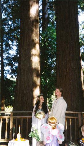 weddingtrees
